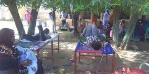 مواطنو كسلا يطالبون الصحة الاتحادية بالتدخل للسيطرة على مرض (الشيكونغونيا)