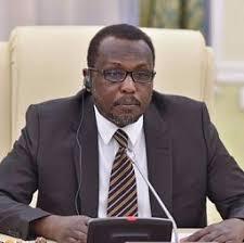 سفير السودان في روسيا: تعاون سوداني مصري لتشكيل قوة مراقبة مشتركة على الحدود مع ليبيا