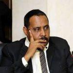وزير الإعلام: على المعارضة ألا تنخدع بالدعاية السياسية المدسوسة