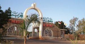 جامعة الجزيرة تعلن استئنافاً جزئياً للدراسة