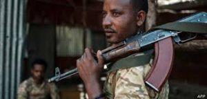 """حشود عسكرية اريترية علي الحدود الإثيوبية قبالة """"الفشقة الصغري"""""""