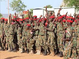 الجيش يبحث تطوير الجيش الشعبي بجنوب السودان